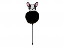 Dhs19