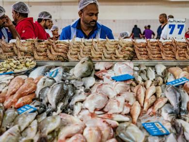 Sharjah Fish Market