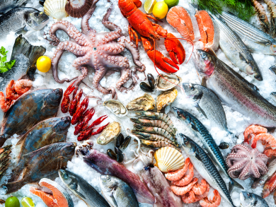 Coral Beach Resort Sharjah launches all-you-can-eat seafood offer for October