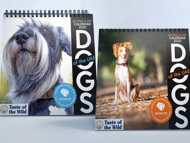 The Cats and Dogs of the UAE 2020 calendars are available now