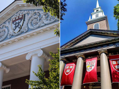 Free courses from Harvard University now available in the UAE