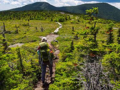 How to virtually hike America's Appalachian Trail in the UAE