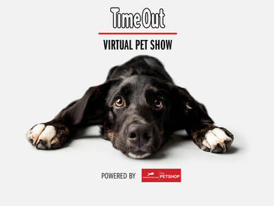 Time Out UAE Pet Show: The winners
